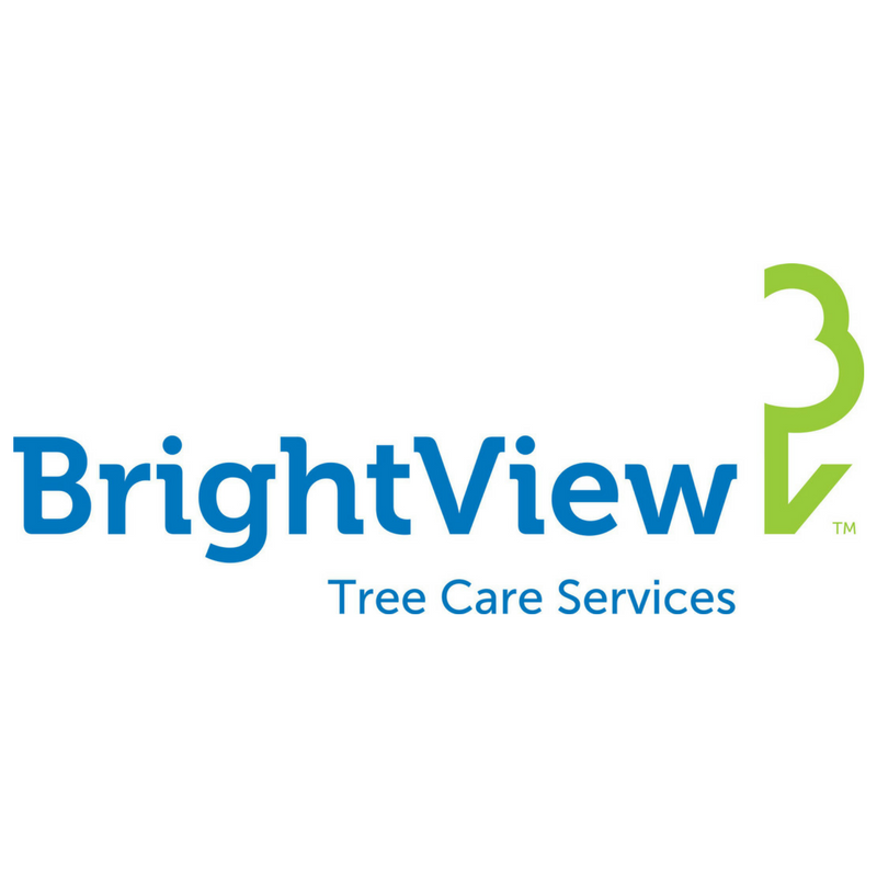Brightview tree