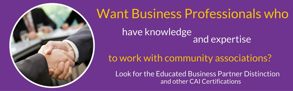 Educated Business Partner Distinction