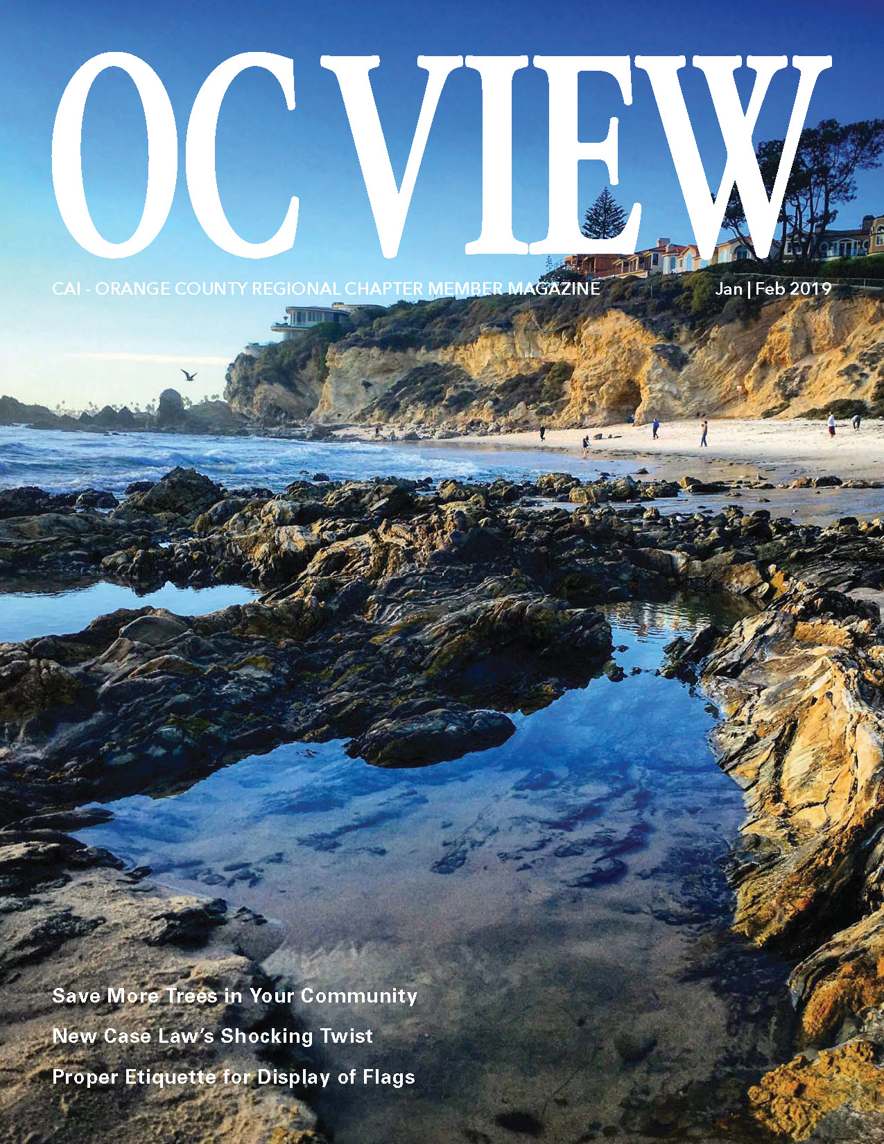 OCView_JanFeb2019_DL